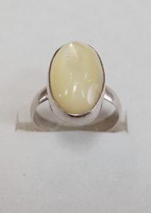 Prsten od sedefa 1 Nautilus nakit